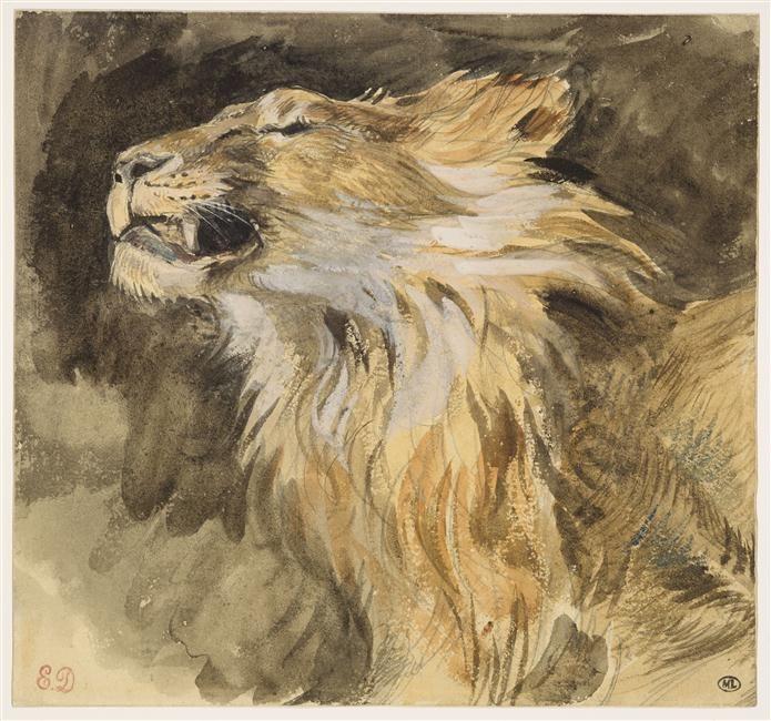 Tete De Lion Rugissant Eugene Delacroix Eugene Delacroix Lion