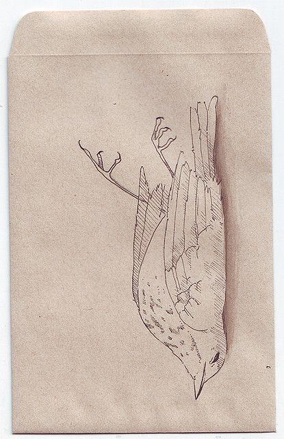 Dead Bird 2 Art Inspiration Art Bird Drawings