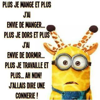 Les Conneries Des Minions Image Texte Blague Humour Drole Minion Humour