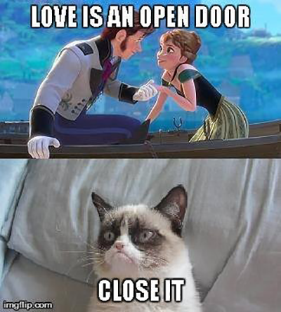 Grumpy Cat still doesn't get Frozen.