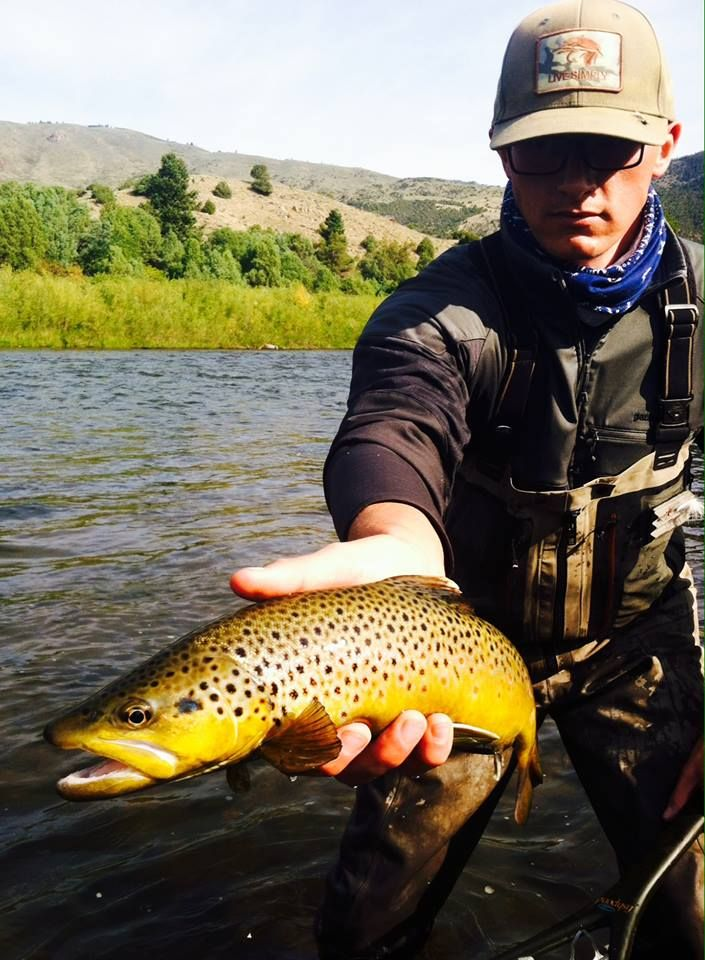 Fly Fishing In Vail Co Online Fly Fishing Store Fly Fishing Products Trips Fly Fishing Store Fly Fishing Fishing Guide