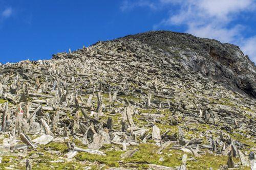 Mt. Great Hafners bristled ridge by edvardstorman-badri  Austria Great Hafner High Tauern blue grass mountain raised rocks sky upright Mt. Great Hafner's bri
