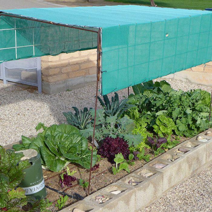 garden shade cloth. Garden Ideas · Shade Cloth Over Plants D