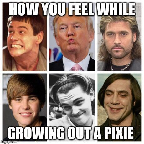 Image result for growing out a pixie timeline
