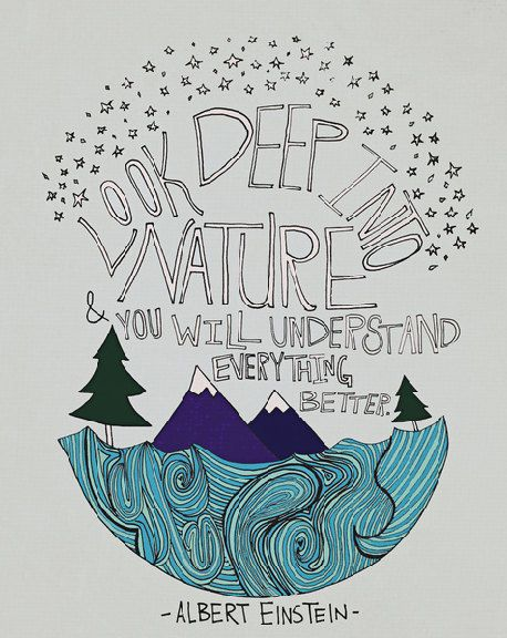 Einstein Nature Art Print 8×10 Illustration Mountain