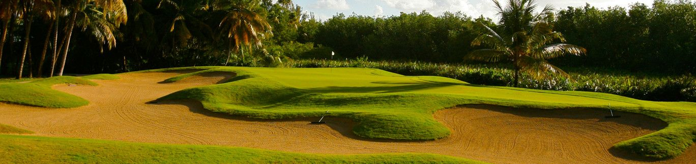 17+ Bahia golf puerto rico ideas in 2021