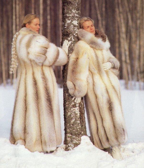 golden island fox fur coat - Google Search | Glamorous Golden ...