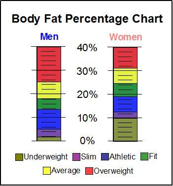 Visceral fat chart for women weight lifting percentage pdf percent body also rh pinterest