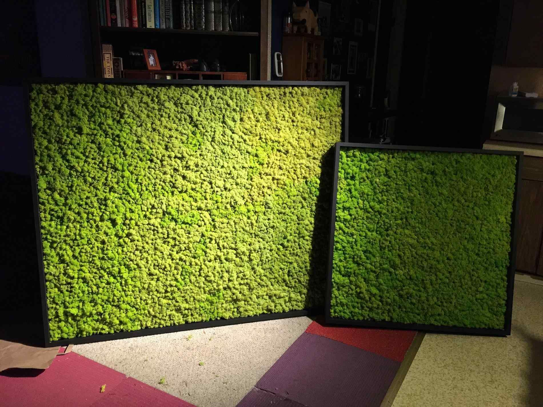 Gorgeous 20 Diy Indoor Moss Wall For You Home Inspiration Breakpr Moss Wall Moss Wall Art Wall Paneling Diy