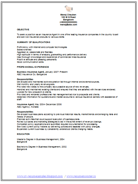 Professional Curriculum Vitae Resume Template for All Job – Insurance Agent Resume