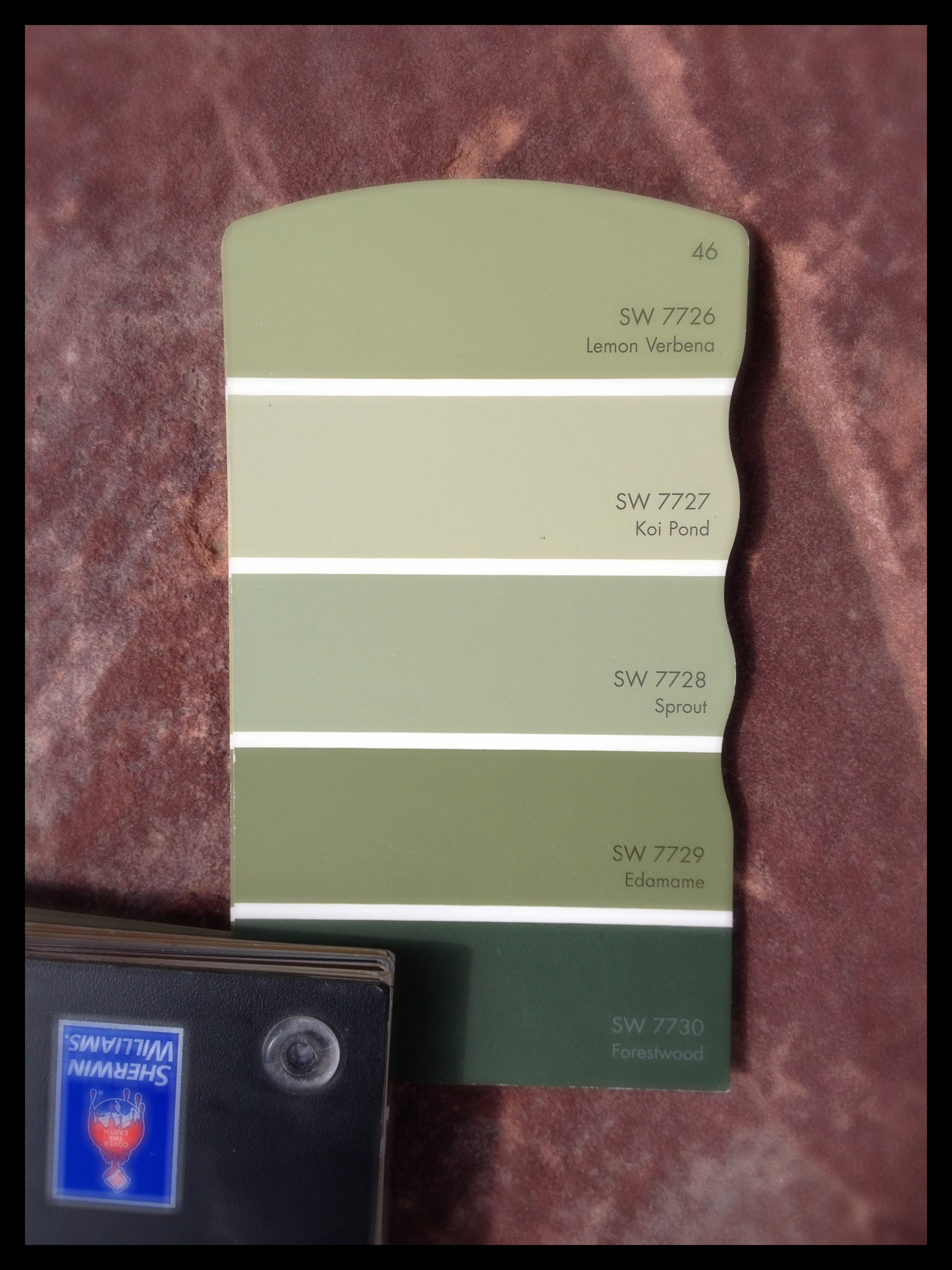 Sage Color Palette Best Exterior Paint Colors Colorado