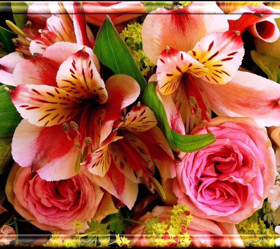 Pin by Linda Wilkens on screen savers Flowers, Bouquet