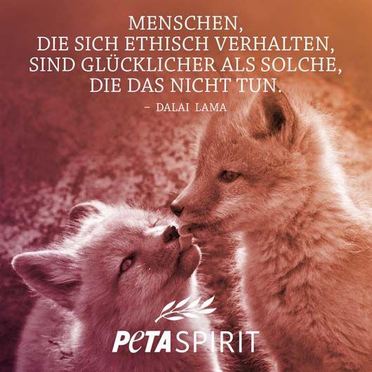 PETA Spirit Zitat von Dalai Lama #veganquotes