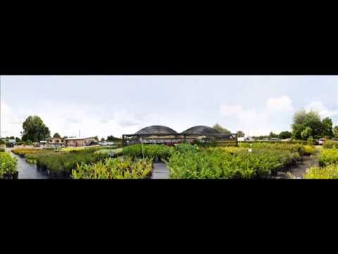 Royal Landscape Nursery offers a full range of landscape and paving services from design to installation.To know more: http://royallandscapenursery.com