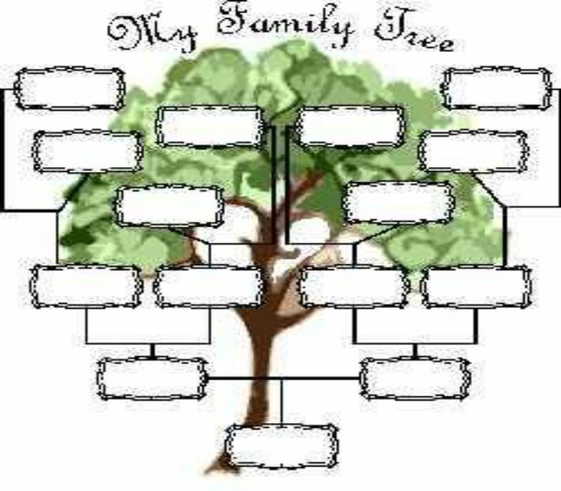 Printable blank family tree family tree family tree for Plain family tree template