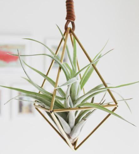 Himmeli Diamond Air Plant Ornament By Handmade Sammade On Scoutmob