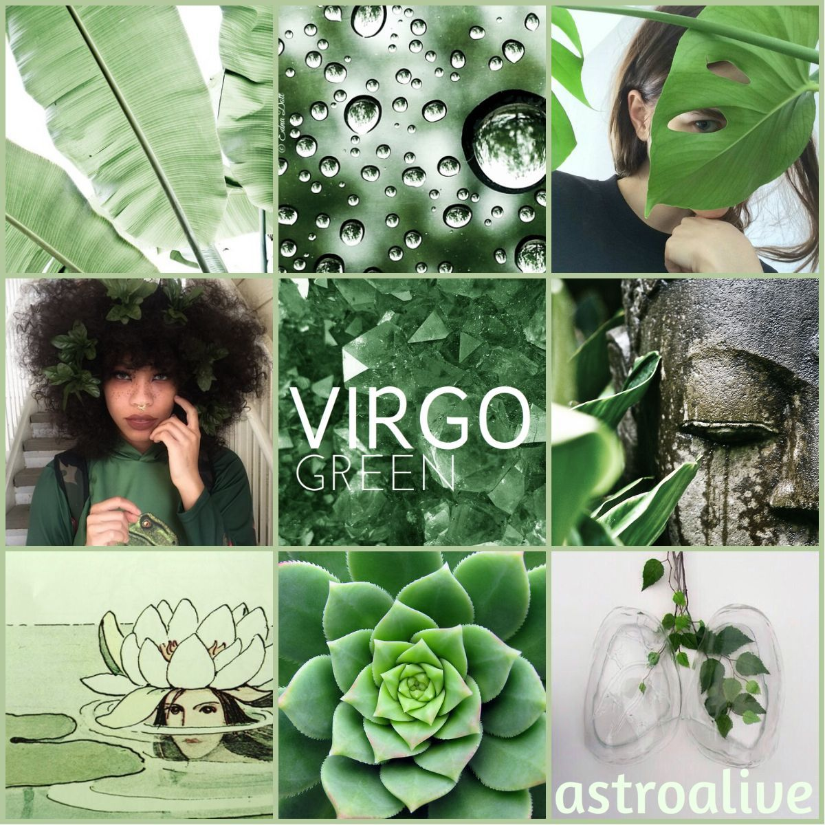 #perseverancegreen #dependability #greenpositive #protection #considered #astrology #aesthetic #service #symbols #healing #restful #health #vigor #color #virgoAstrology Color Aesthetic: Virgo GreenPositive Symbols: health, service, vigor, dependability, protection, perseveranceGreen is considered healing as it is the most restful color for human eyes and... #astrologyaesthetic