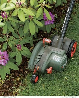 Perfect edges for your beds and borders follow these for Edging flower beds with edger