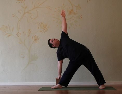 listen to the gut  yoga of digestion and indigestion