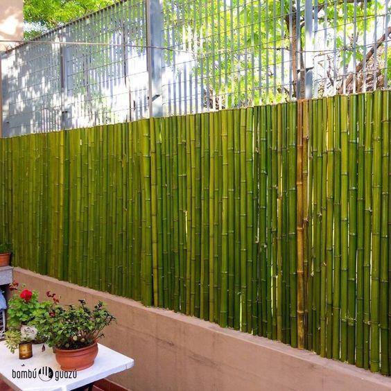 10 ideias de cercas de bambu garagem pinterest - Canas de bambu decoracion ...