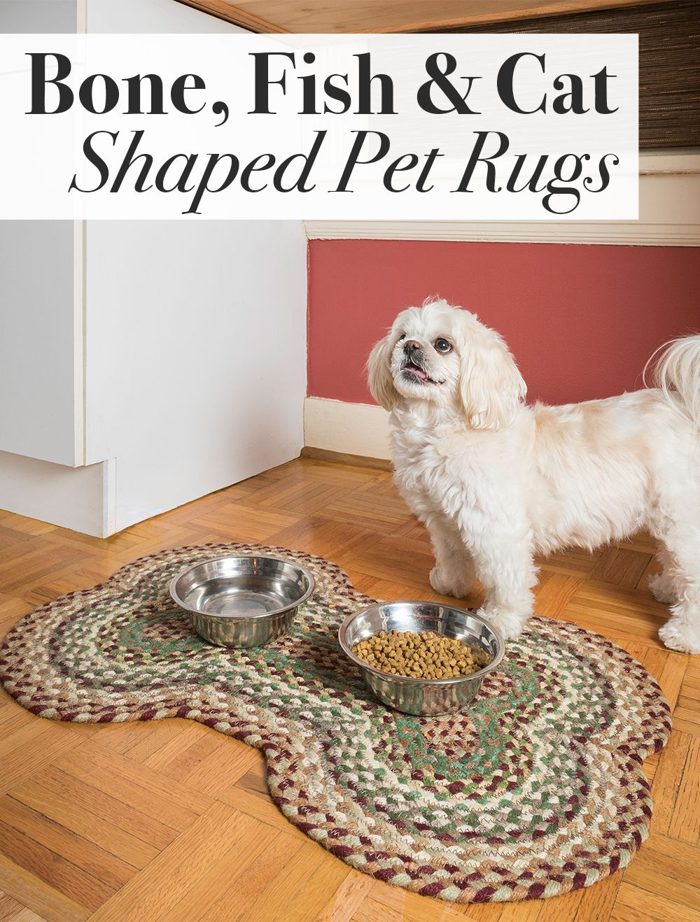 Braided Rugs In Fun Shapes Dog Bones Cats And Fish Shapes That