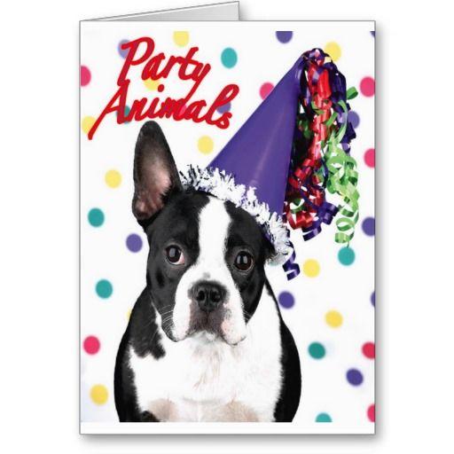 Boston Terrier Birthday Card Boston Terrier Birthday Card