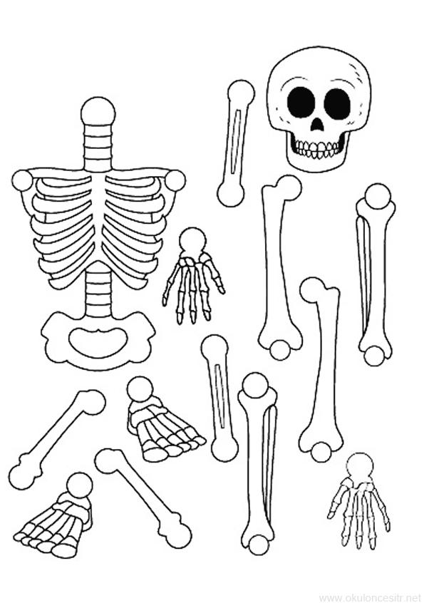 Iskelet Kalibi 2020 Iskelet Boyama Sayfalari Sanat Etkinlikleri