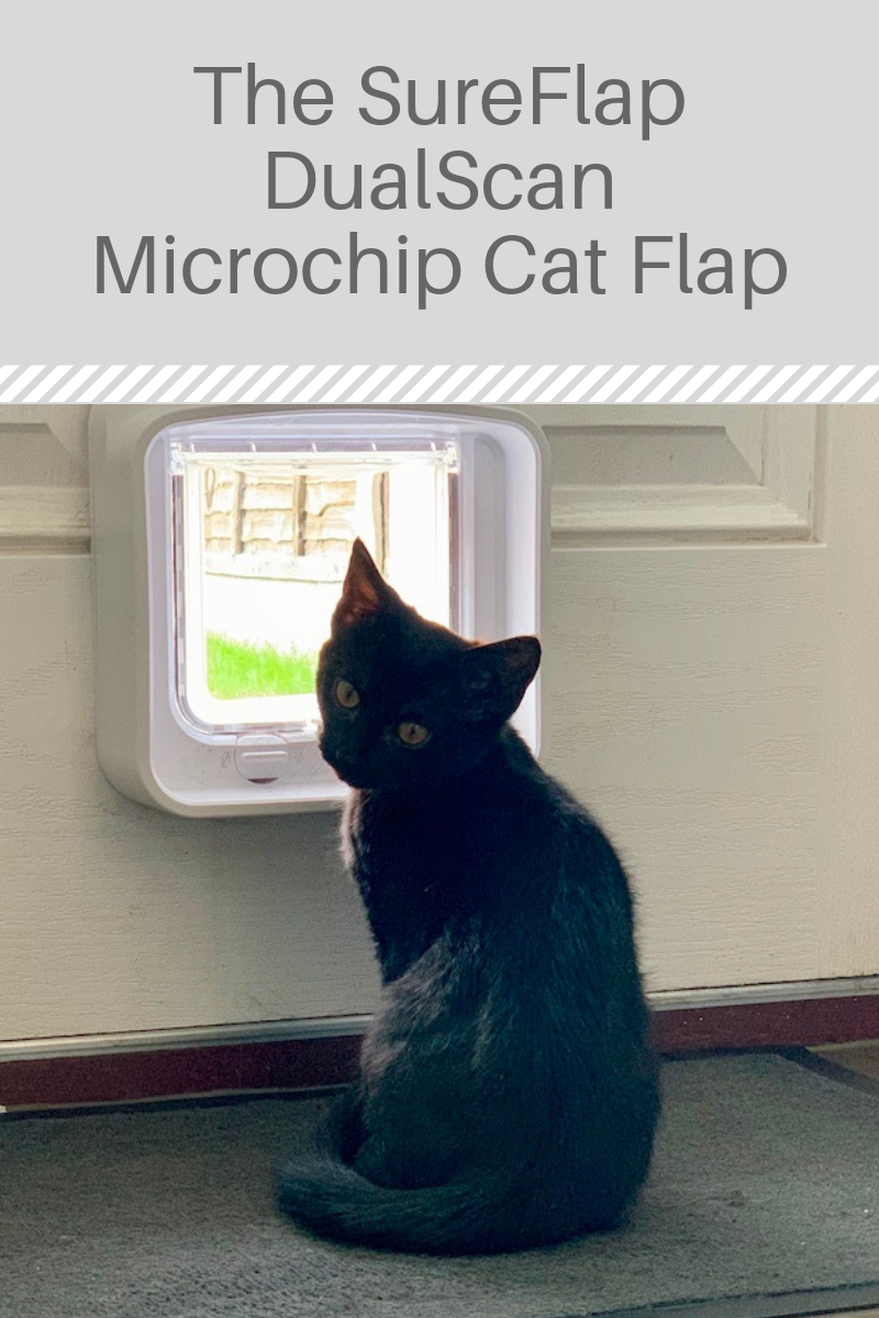 The SureFlap DualScan Microchip Cat Flap Cat flap, Cats
