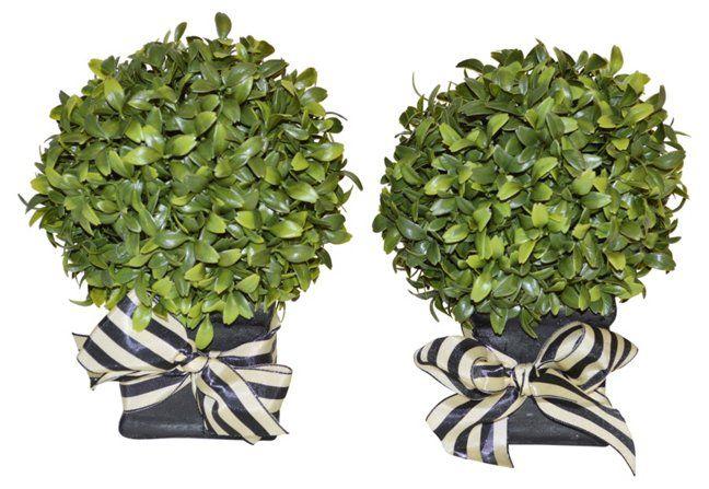 "Decorative Boxwood Balls S2 8"" Boxwood Ball In Planter Faux  Decor Under $100"