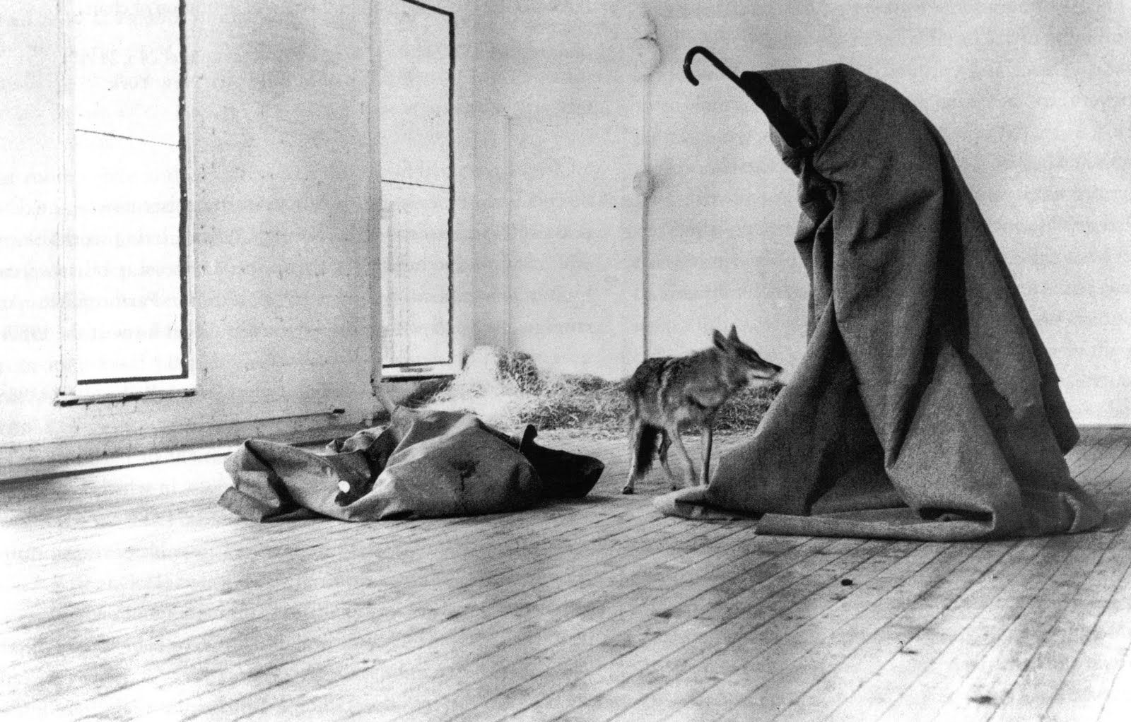 joseph beuys coyote joseph beuys pinterest k nstler kunst und skulpturen. Black Bedroom Furniture Sets. Home Design Ideas
