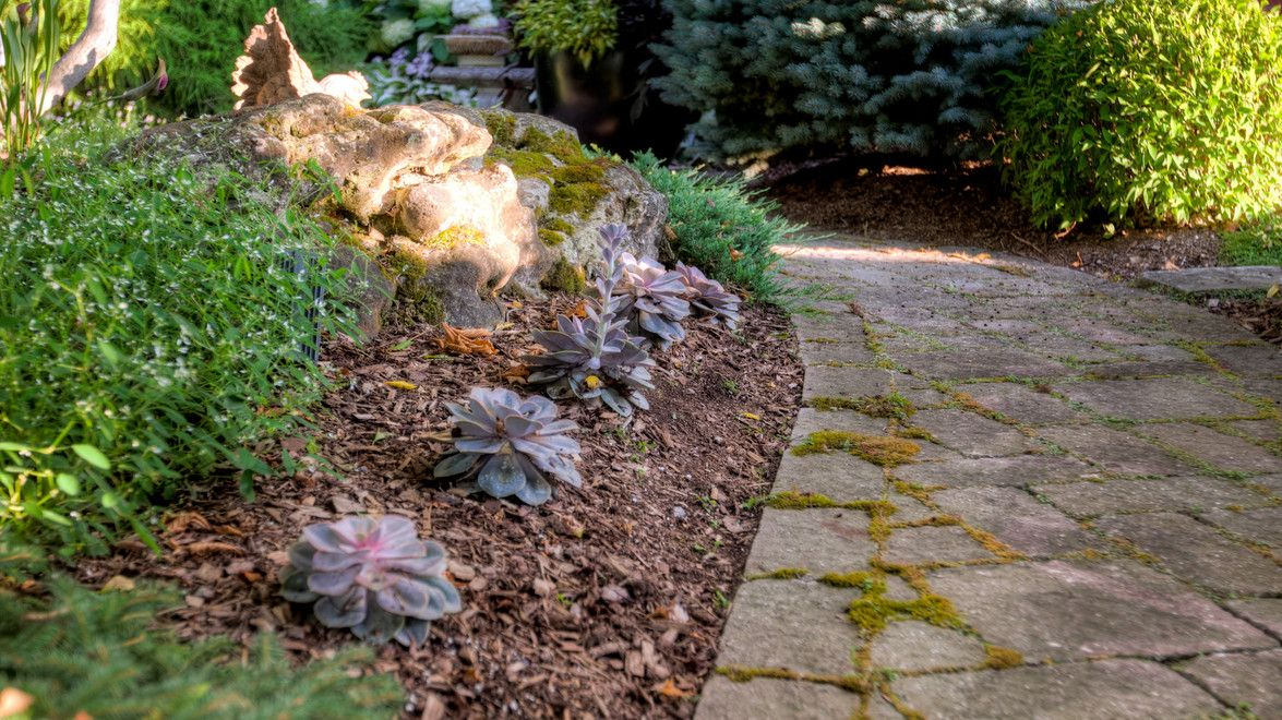 Mulching Your Garden Will Do More Than Just Improve Its Appearance. When  Applied Properly, Mulch Can Help Retain Soil Moisture, Regulate Soil  Temperature, ...