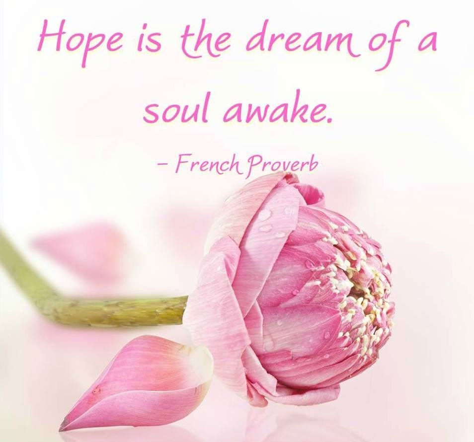 Hope Is The Dream Of Soul Awake Insipirational Quotes