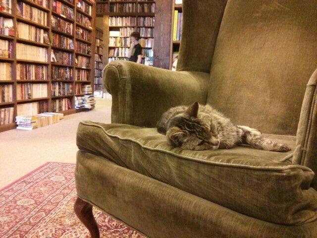 At The Dusty Bookshelf Lawrence Kansas Lawrence