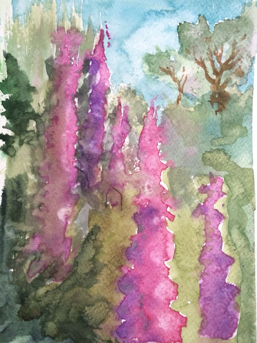 Watercolour foxgloves in the woods