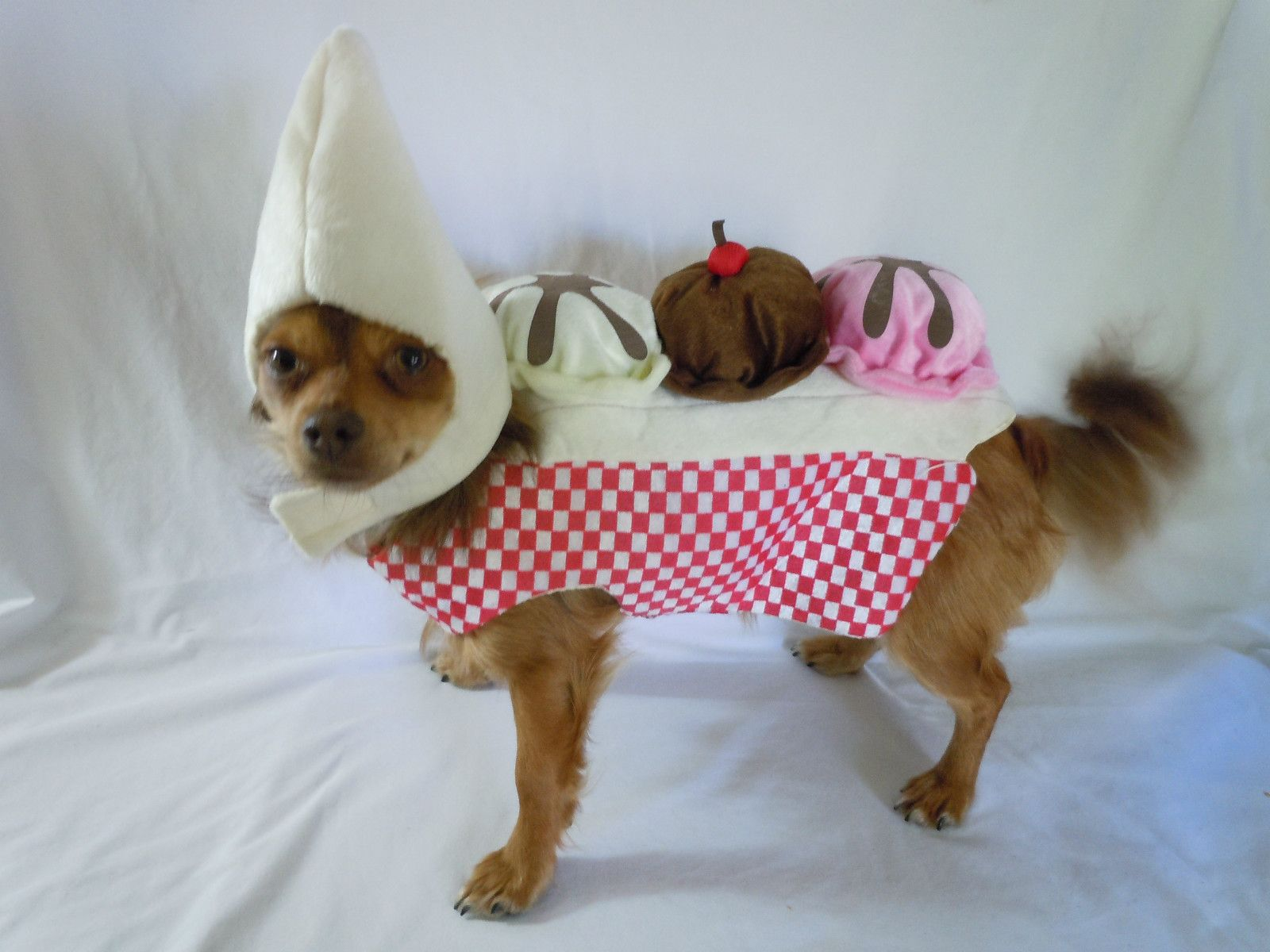 banana costumes for dogs & banana costumes for dogs | McKenzyu0027s Pins | Pinterest | Banana costume