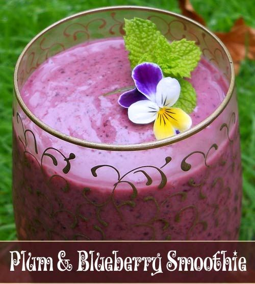 Slow Juicer Frozen Yogurt : PLUM & BLUEBERRY SMOOTHIE 1 cup frozen blueberries, 2 red plums (pitted and sliced), 1 small ...