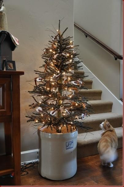 twig tree in crock.......and a very interested kitty! - Twig Tree In Crock.......and A Very Interested Kitty! Prim
