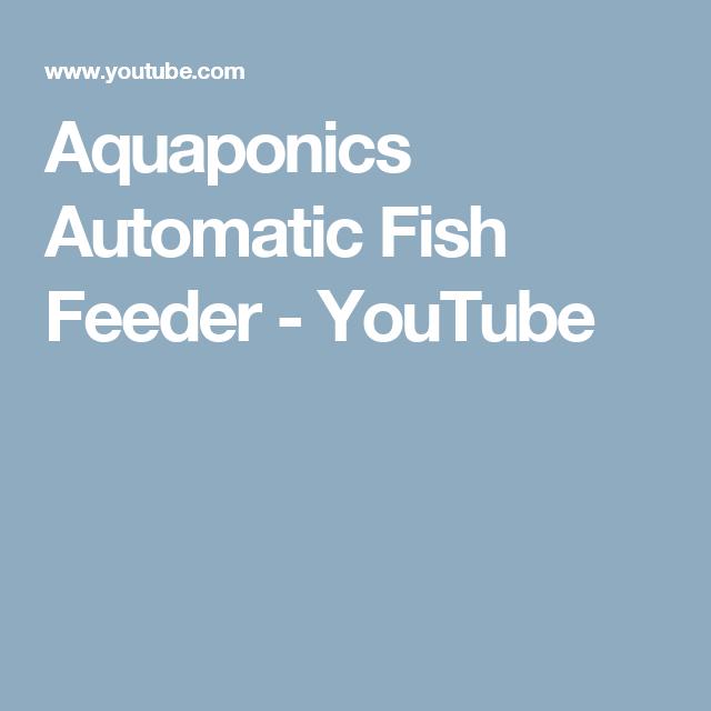 aquaponics automatic fish feeder youtube aquaponic gardening pinterest