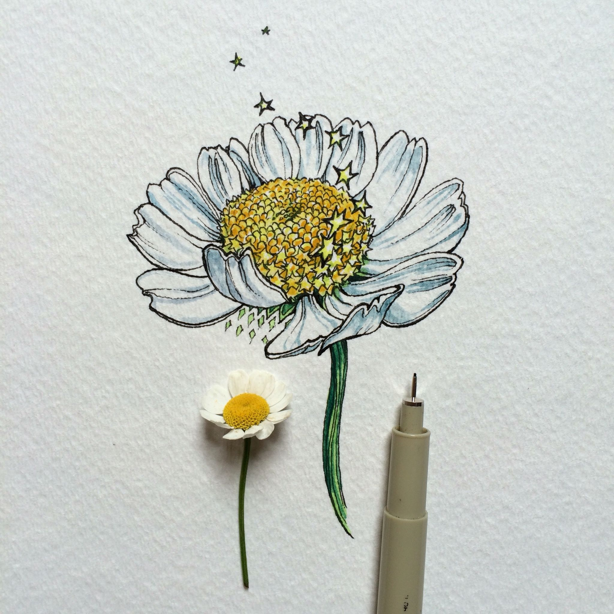 Ink u watercolor flowers pinterest watercolor draw and