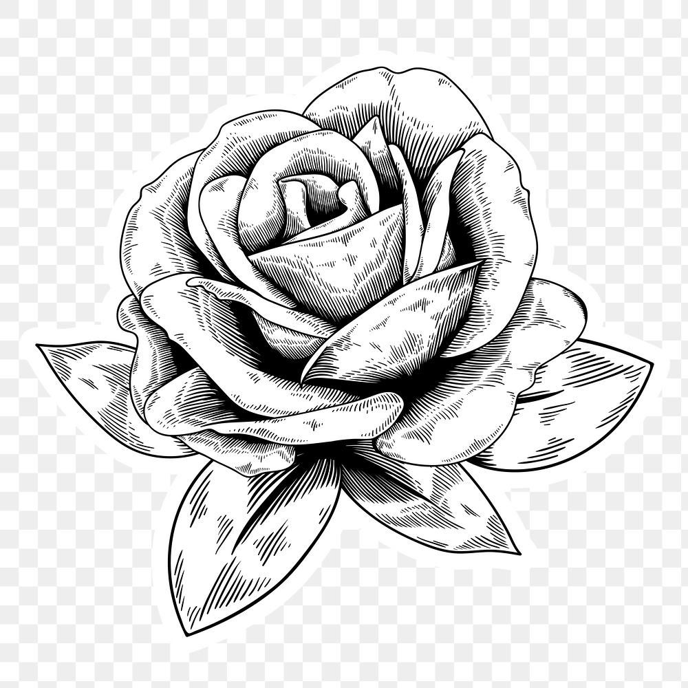 Download Premium Png Of Black And White Rose Sticker With A White Border In 2020 Design Element Sticker Design White Roses