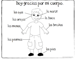 Spanish Thanksgiving Vocabulary Coloring Pages Teach Children Body Parts