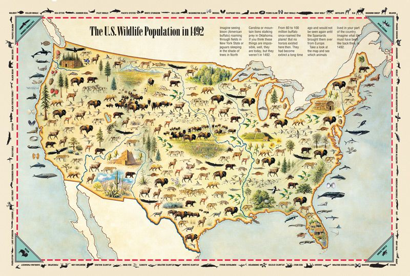 Wildlife population in 1492 maps Pinterest Native American