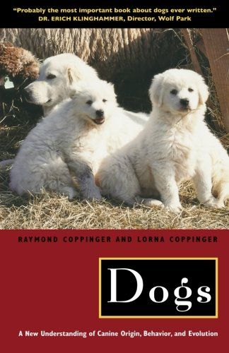 Dogs A New Understanding Of Canine Origin Behavior And Evolution By Raymond Coppinger Dog Behavior Dog Behavior Training Canine