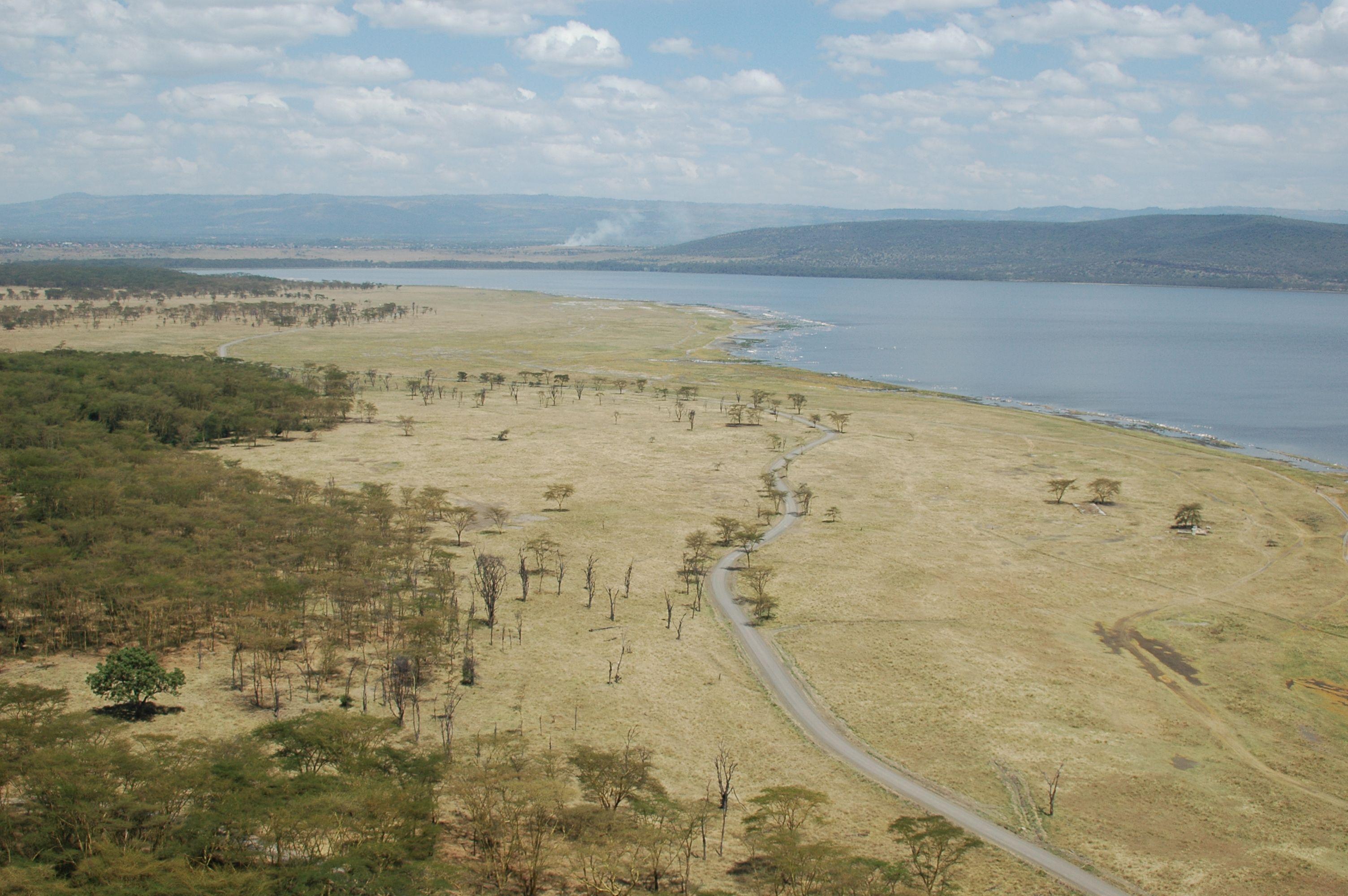 Lac et parc national de Nakuru, Vallée du Rift, Kenya#Tout proche de la quatrième ville du pays, Nakuru, le lac est le plus connu des lacs alcalins du Rift kenyan. Un parc national a été crée tout autour afin de protéger au maximum les rhinocéros noirs, réintroduits il y a peu. De nombreux animaux évoluent autour du lac : zèbres, babouins, autruches, chacals, et même des girafes de Rotchschild. #http://urlz.fr/3hnc#warnercnr.colostate.edu