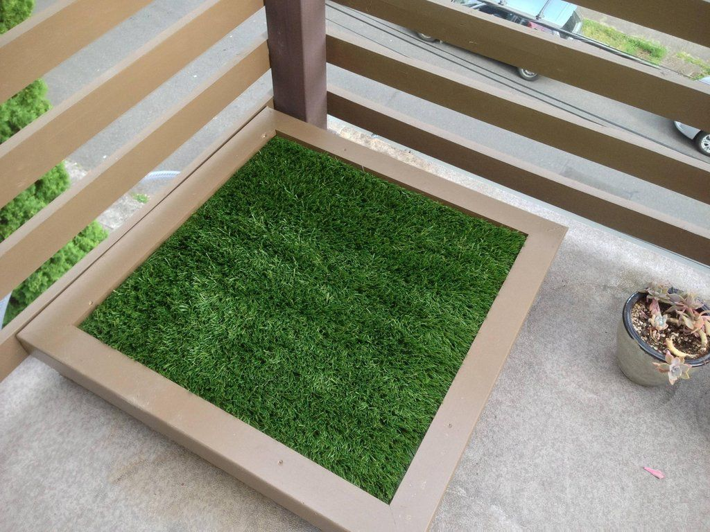 automated grass amazing potty synthetic box of standard youtube first porch dog litter gallery eyemu patio is