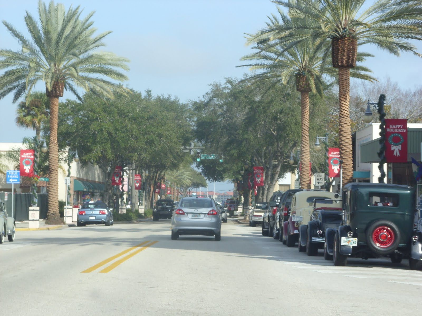 Downtown New Smyrna Beach Florida Beautiful Palm Tree S