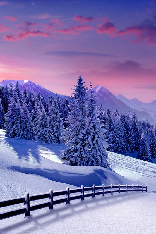 Beautiful Winter Scenery, Just Love The Moon On The Snow