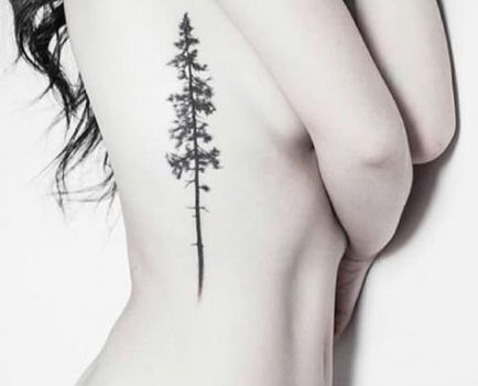 Photo of 47 Trendy Evergreen Tree Tattoo Washington Black
