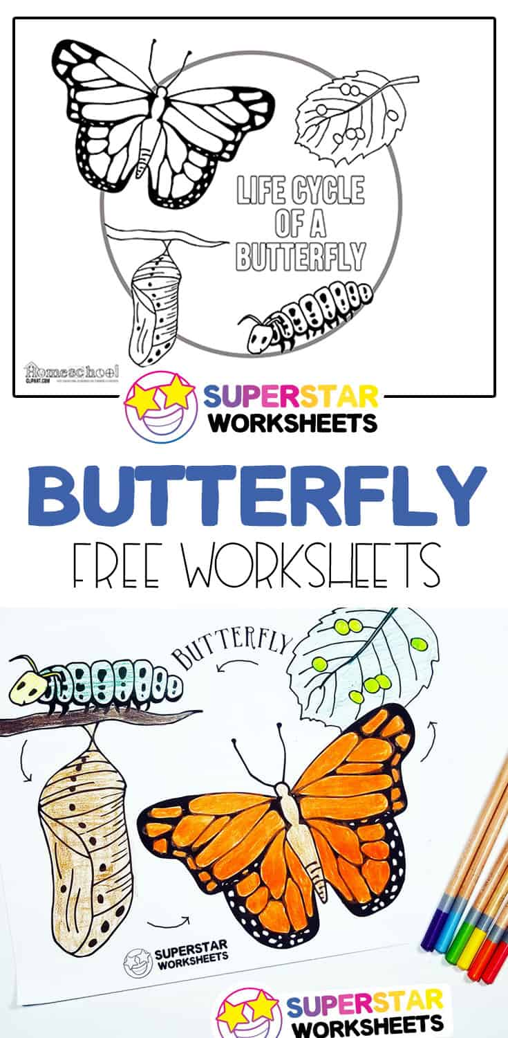 Butterfly Life Cycle Worksheets Are The Perfect Solution To Teach Life Cycles That Are Al Butterfly Life Cycle Preschool Butterfly Life Cycle Butterfly Lessons [ 1500 x 735 Pixel ]