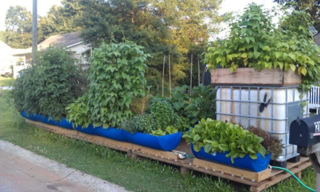 New Way To Grow Rain Gutter Garden Project Gutter